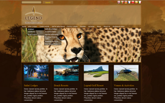 South African Hotel Group Corporate Website Redesign
