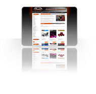 Custom website content management system